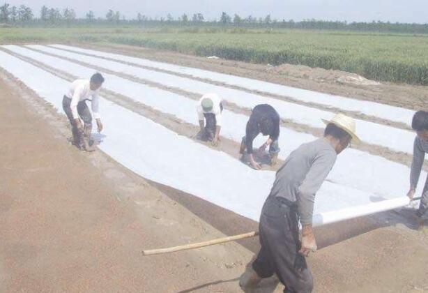 福建漳州地区哪里有农用无纺布生产厂家?